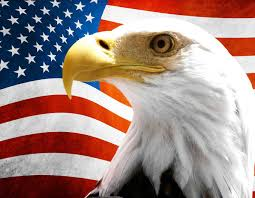9in X 7in Us Flag With Eagle Vinyl Sticker American America Decal Stickertalk