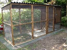 How To Build A Safe Electric Chicken Fence Chicken Coop Run Backyard Chicken Coop Plans Chickens Backyard