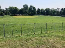 Guelph S Only Fenced In Dog Park Already Faces Closure 5 Months After Opening Guelph Globalnews Ca