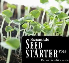 homemade seed starter pots
