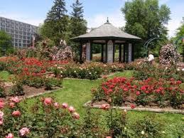 thornden park country garden design