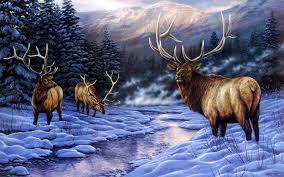 elk wallpapers hd desktop and mobile