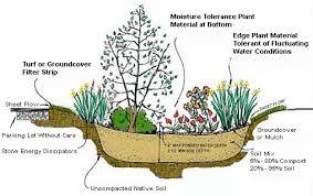 rain gardens delaware watersheds