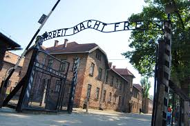 auschwitz krakow tour from warsaw