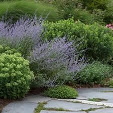 parterre garden services 14 photos