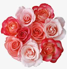 free png roses bouquet png