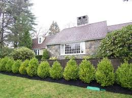 6 Wood Lane Winchester Ma House Landscape Garden Front Of House Privacy Fence Landscaping