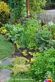 front yard garden edible landscape