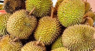 top 6 benefits of baobab fruit and powder