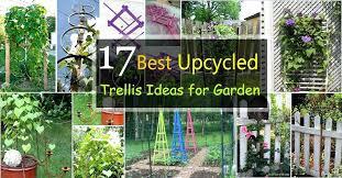 garden trellis ideas burfi