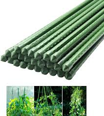 Metal Plastic Coated Plant Cage Supports Climbing For Tomatoes Trees Cucumber Fences Beans 50 Pcs Amazon Ca Home Kitchen