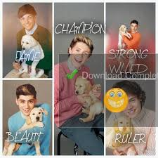 name meanings one direction fã art