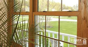 prevent mold growth on window sills