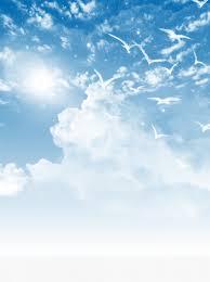 الخلفية الزرقاء تحلق الطيور الخلفية السماء الزرقاء الخلفية الغيوم