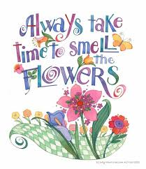 smell the flowers quotes provenwinners flower quotes flower