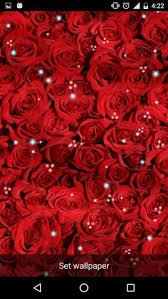 rose live wallpaper apk 2 2