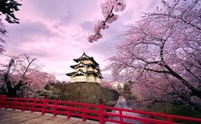 Nhật Bản: Tuyệt sắc giao mùa làm du khách hài lòng