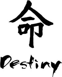 Amazon Com Destiny Chinese Symbol Character Graphic Car Truck Windows Decor Decal Sticker Die Cut Vinyl Decal For Windows Cars Trucks Tool Boxes Laptops Macbook Virtually Any Hard Smooth Surface Automotive