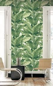 palm leaf wallpapers daisy bennett