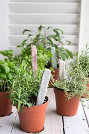 diy herb garden markers with air dry