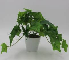 China Real Touch Plant English IVY for Wall Decor - China Artificial Plant  and Artificial English IVY price
