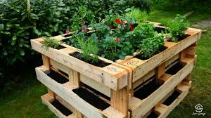 raised bed gardens for flowers and