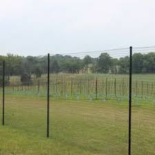 50 Deer Fence Ideas Deer Fence Fence Garden Fencing