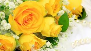 flowers bouquet flower yellow roses