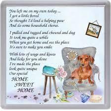 dachshund red dog coaster home sweet