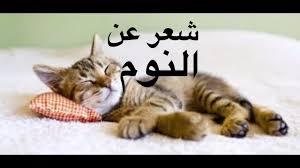 شعر عن النوم مضحك كلام مضحك جدا عتاب وزعل