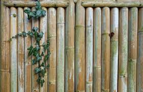 Eco Friendly Fencing Which Option Is Best For The Earth Earth 911