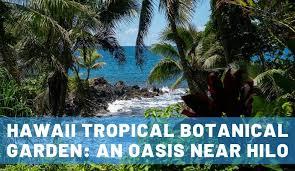 hawaii tropical botanical garden a big