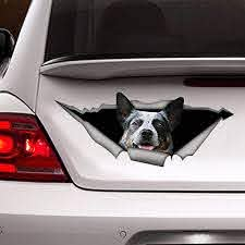 Amazon Com Blue Heeler Car Decal Vinyl Decal Vinyl Sticker For Cars Windows Walls Fridge Toilet And More 15 Inch Kitchen Dining