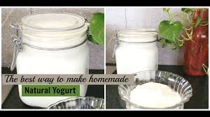homemade natural fermented yogurt