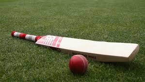 leads cricket bat design research