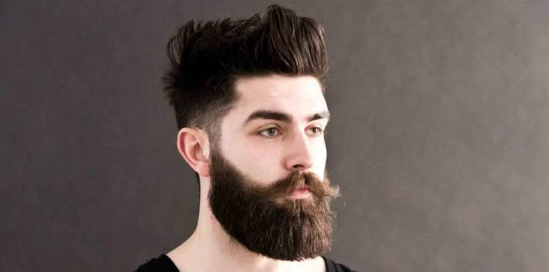 Image result for mens beared