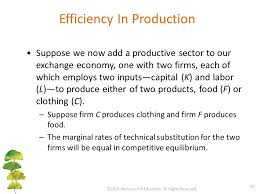 General Equilibrium and Market Efficiency - ppt video online download