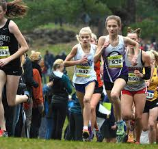 Prep girls cross country preview: West's Genevieve Nashold, Sun Prairie  team ready for more | High School Cross Country | madison.com