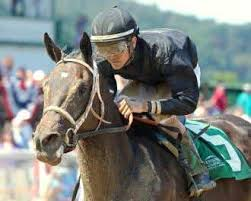 Ivy Bell due for some luck in Dream Supreme Stakes