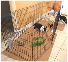 Amazon Com Bunny Rabbit Pen Exercise Indoor 41 Inch With Door House Pet Dog 8 Panel Gate Yard Enclosure X Pen Xpen Fence Playpen Ebook By Oistria Pet Supplies