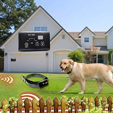 Angelakerry 2 X Electronic Dog Fence System In Ground Invisible Dog Containment With 650 950 Ft Wire Receiver Send Beeps And Dog Fence Behavior Dog Training