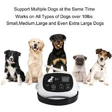 2 Dogs Wireless Pet Containment System Wireless Dog Fence Guardian Electric Invisible Wireless Dog Fence Dog Containment System Walmart Canada