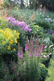 plan for a more colorful flower garden