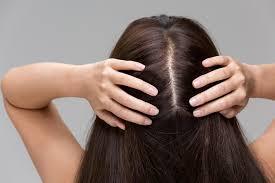 how do hair follicles biology