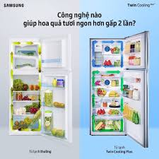 Samsung - Tủ lạnh Samsung Twin Cooling Plus