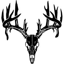 Amazon Com Deer Buck Skull Antlers Hunter Hunting Sportsman Car Truck Windows Decal Sticker Die Cut Vinyl Decal For Windows Cars Trucks Tool Boxes Laptops Macbook Virtually Any Hard Smooth Surface