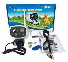 Innotek Dog Fence Vs Transfer Wireless Dog Fence Reviews 2020