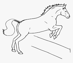 Horse Jumping Fence Draw A Horse Jumping Hd Png Download Transparent Png Image Pngitem