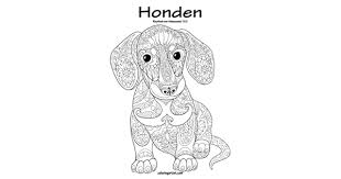 Honden Kleurboek Voor Volwassenen 1 2 By Snels Nick Amazon Ae