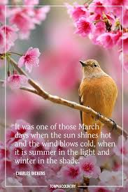 best spring quotes inspirational and funny sayings about spring
